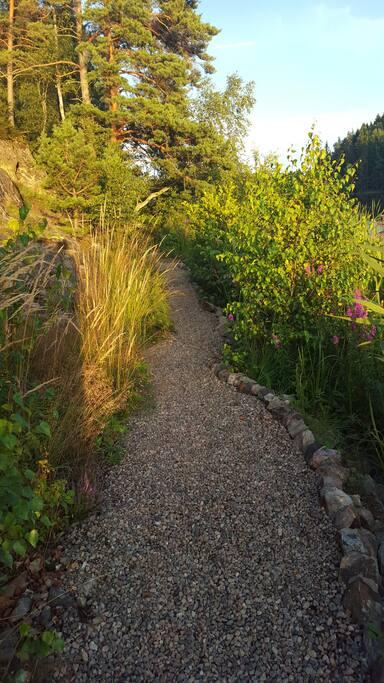 The path along the lake.