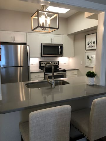 Gorgeous Newly Renovated One Bedroom Condo