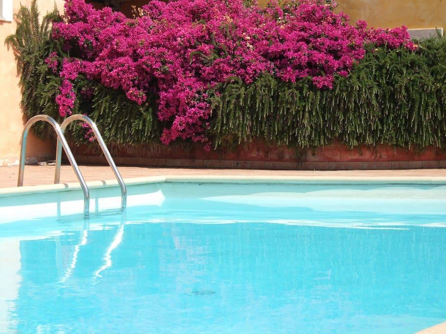 Splendido bilocale in residence con piscina appartamenti for Piscina santa teresa albacete