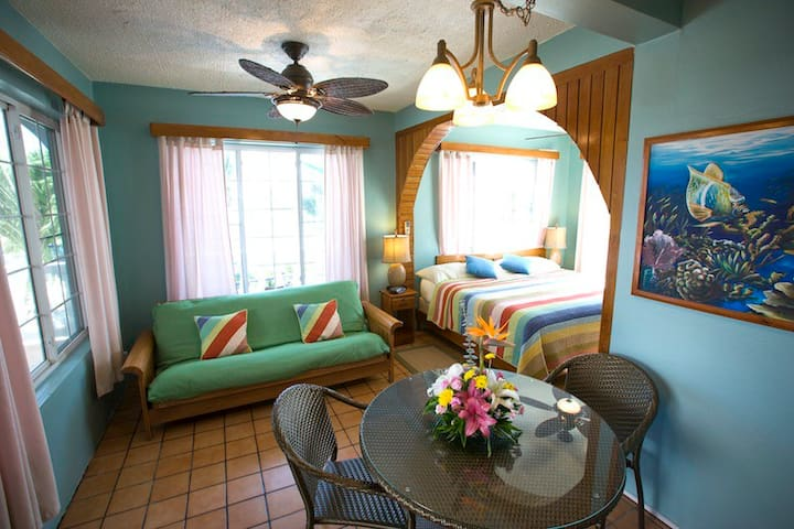 Garden View King Bed Suite #4 with Fully equipped kitchen, private bathroom and a/c.