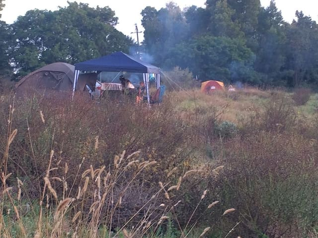 Wild fields & starry nights -camp site (own tent)