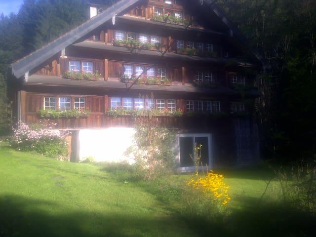 Idyllische Ruhe 10min von St.Gallen - Teufen - Casa