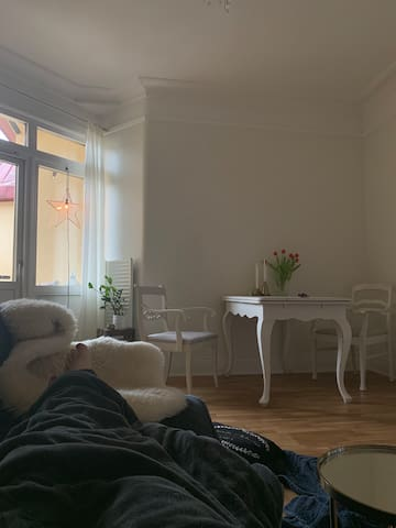 63m2 apartment in central Gothenburg