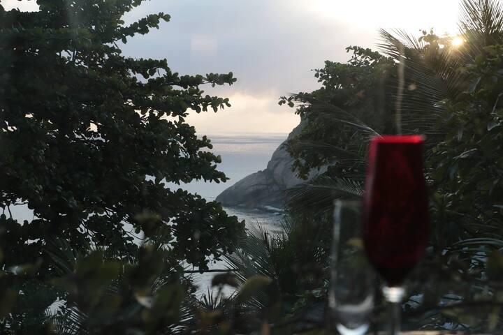 """Hill Paradise"" Joatinga. - Rio de Janeiro"