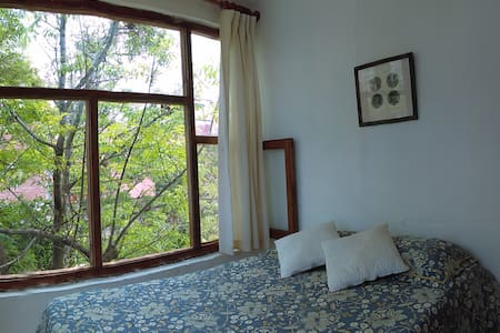 Casa Sabino - San Miguel de Allende - Maison