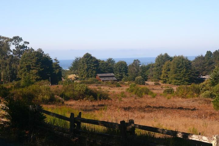 A Gem! Serene views, deck, fireplace, & nature
