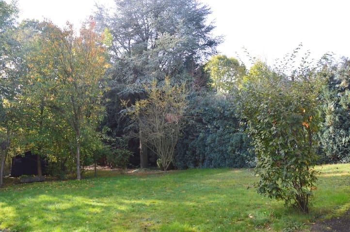 Grand jardin, calme, à l'orée du bois.