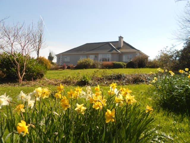 Elphin Co. Roscommon - Roscommon - House
