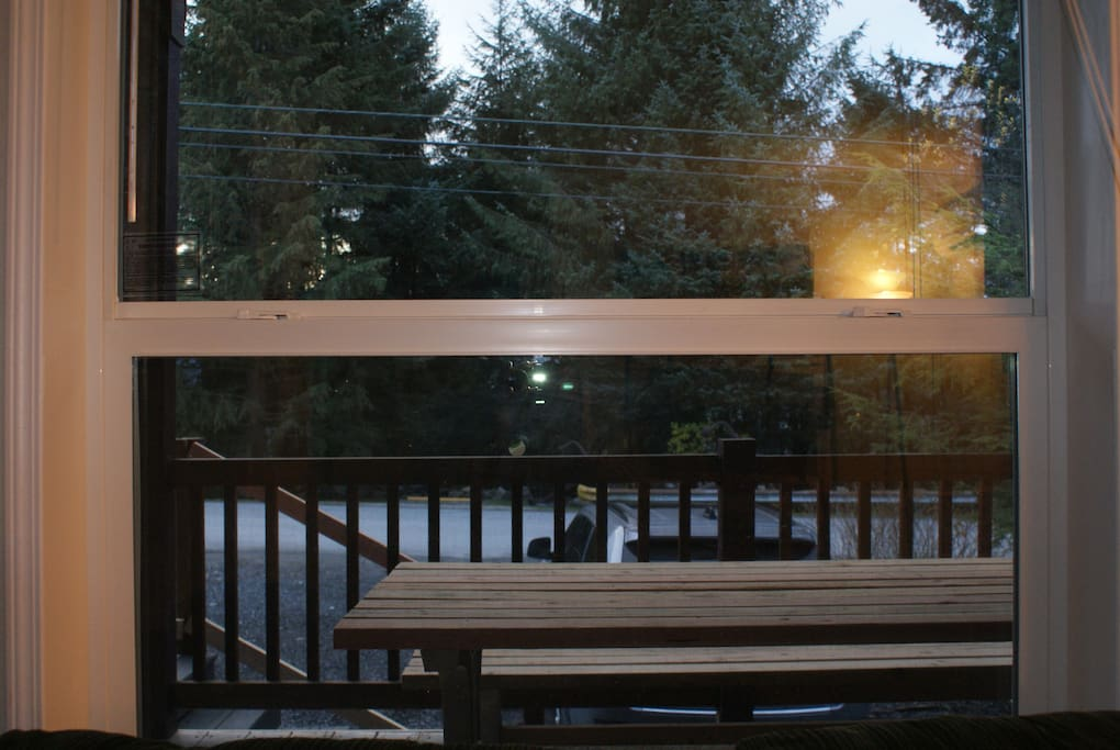 Picnic table on the front deck.