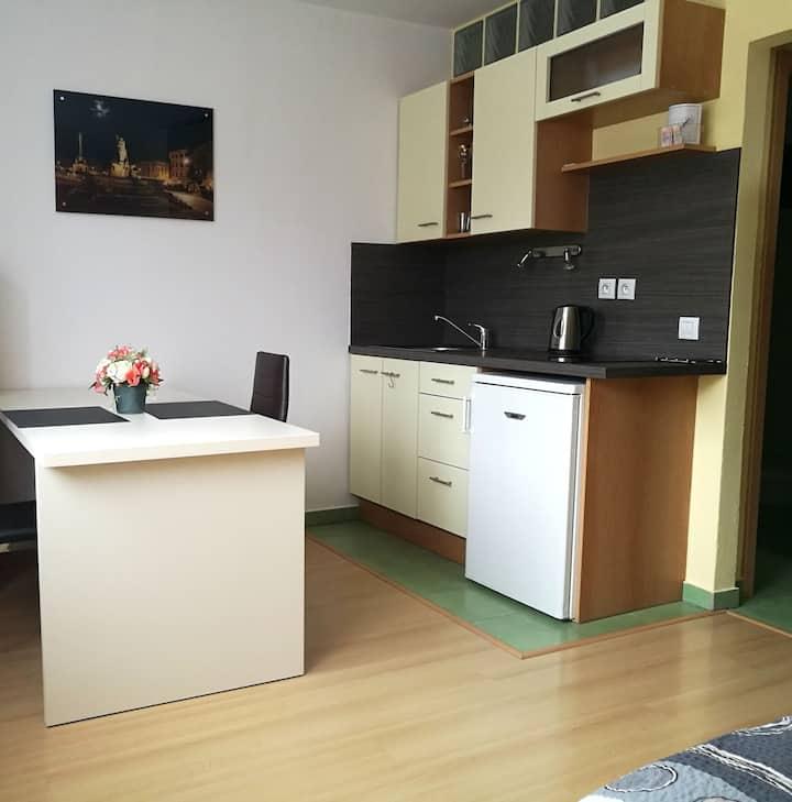 cozy apartment, excellent location
