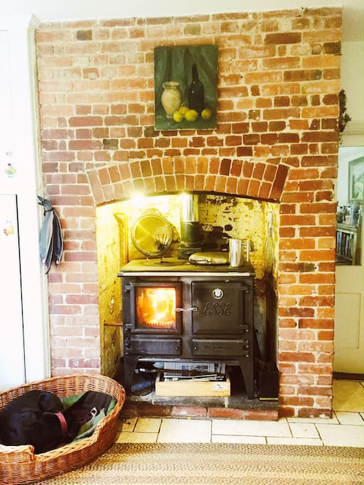 The Esse stove in the kitchen. Great for cooking on as well as keeping you toasty in the colder months (Otter the dog is optional!)