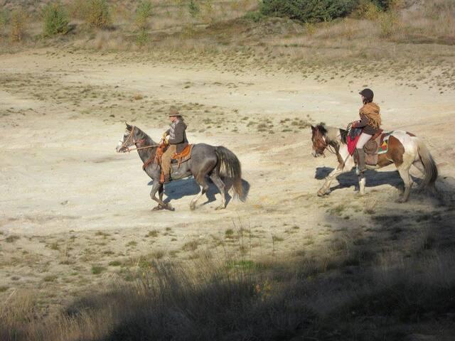 Paarden rit sahara lommel