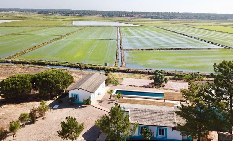 Comporta Lovely house & pool On the rice field