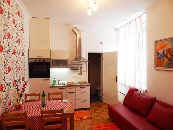 Apartment Patricia - One bedroom - Vila Golf