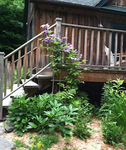 Tree Top Cottage -private getaway - Long Eddy - House