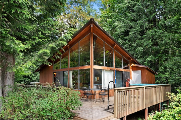 Dog-friendly cabin with soaring views of mountains and private hot tub!