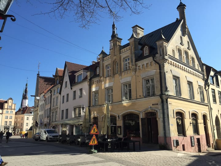 1BR with sauna next to the Town Hall Square