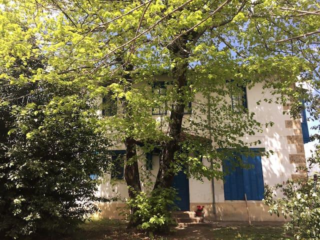 Casa rural 10 o más personas en Sierra de Béjar