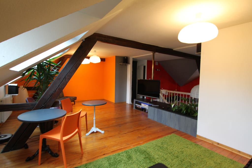 Spacy Attic 3 Bedroom At 50m From Tram 3 Apartments For Rent In Saint Louis Alsace