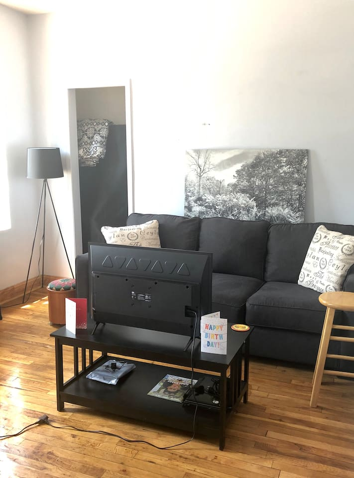 Natural light pours in. Pull out queen sofa bed