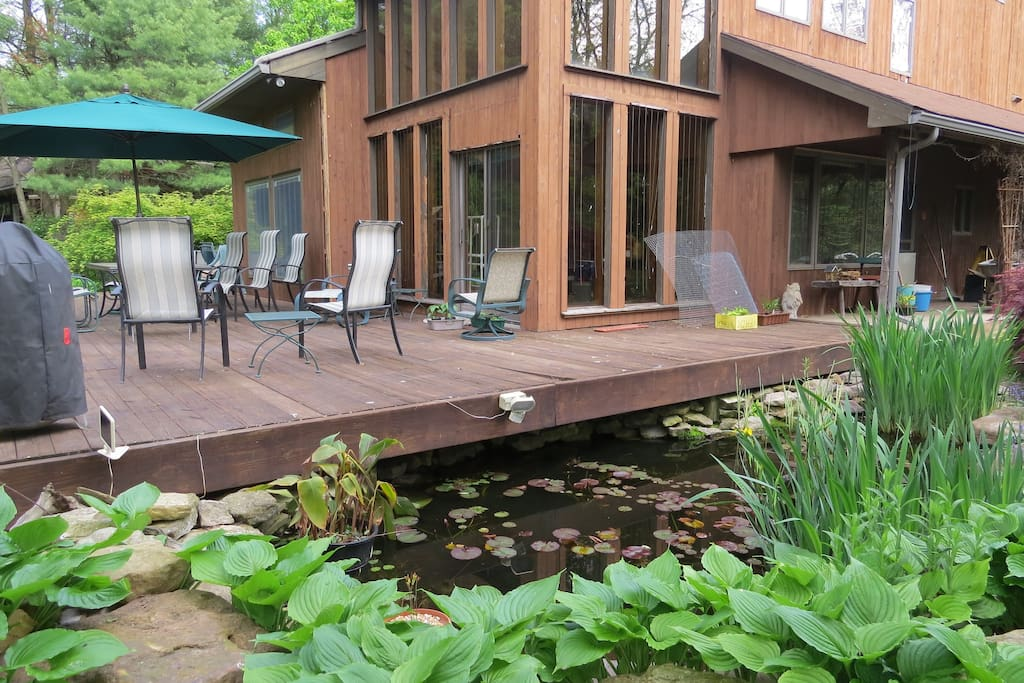 The deck and pond