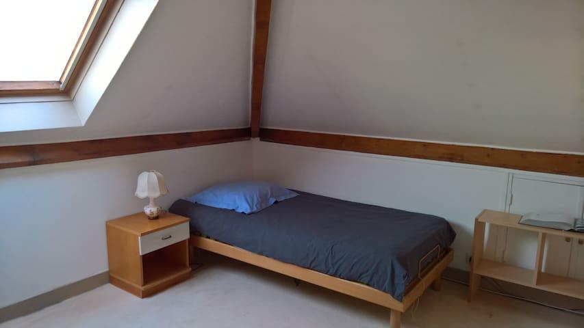 Chambre sous les toits, idéale pour étudiant - L'Haÿ-les-Roses - House