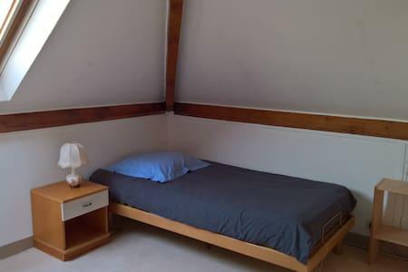 Chambre sous les toits, idéale pour étudiant - L'Haÿ-les-Roses