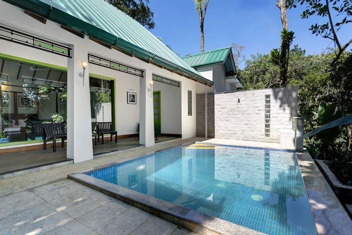 Aanavilasam Luxury Pool Villa - Anavilasam - Villa