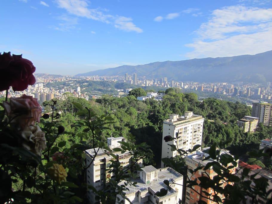 Aussicht aus dem Balkon, das Klima in Caracas immer sonnig, der blaue Himmel ist ein Muss