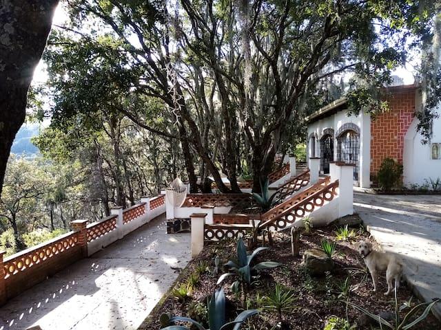 Cabaña completa en el bosque