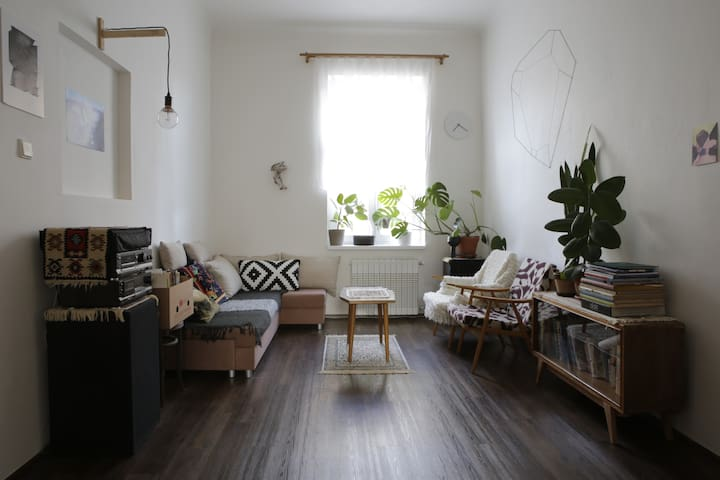 Groovy large flat in city centre just for you. - Prag - Daire