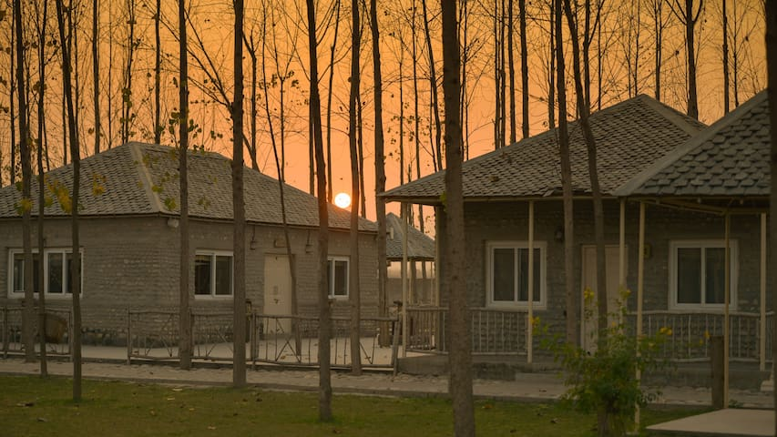 Luxury Cottages at Farmstay Near Chandigarh