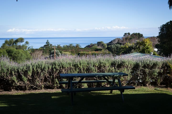 Karirangi Holiday Park-House-Whanarua Bay