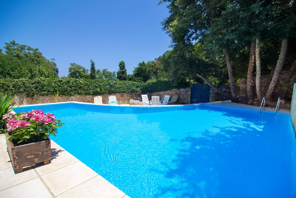 42 m² swimming pool area with full privacy surrounded by nature