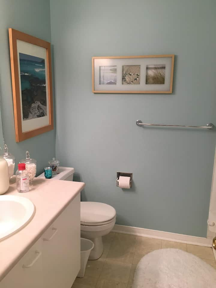 Cozy one bedroom, Lower level, close to amenities