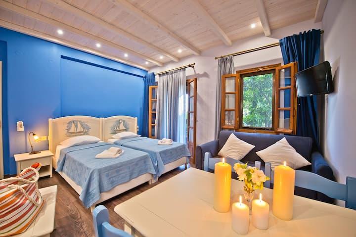 Superior Studio Blue Up to 4 ( 25 sq.m.)