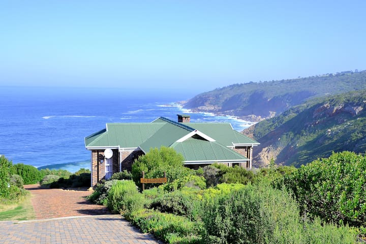Blue Whale Resort - Sea view chalet | 2 Twin rooms