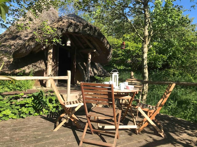 The Big Celtic Bunkhouse an immersion into nature