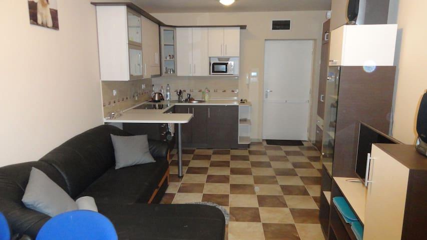 Siófok ezüstparton közvetlen vízparti apartman - Siófok - Appartement