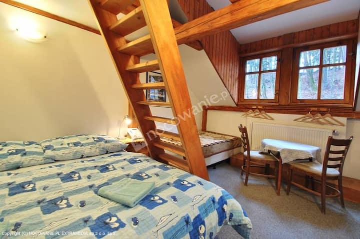 Cosy room 4 - Artur, Ski areal Cerny dul, Krkonose