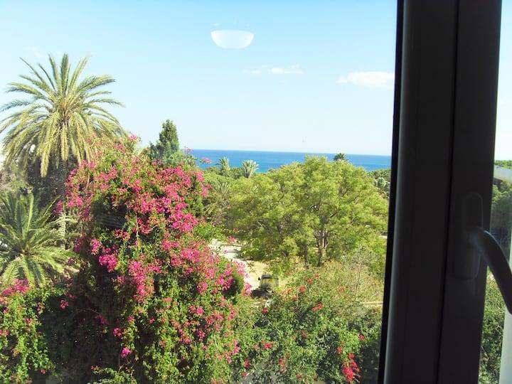 Coquette appartement à Hammamet : vue Mer/Jardin