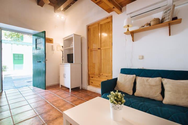 Ideal apartamento en El Centro de Sevilla