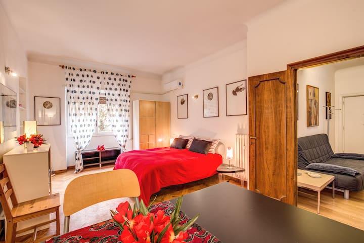Appartamento centro a due km da piazza del Popolo - Roma - Apartamento