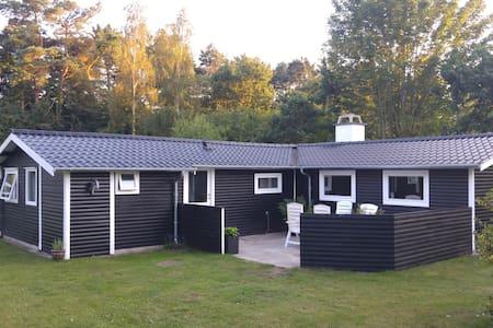 Dejligt familie sommerhus nær skøn strand og skov - Fårevejle - Cabin