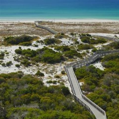 Henderson Beach State Park, less than 2 miles from Mojo, offers pristine coastal dunes with a boardwalk trail.  Absolutely breathtaking!