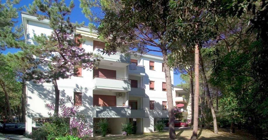 apt for 2+1 pers - dog welcome in Bibione R25315