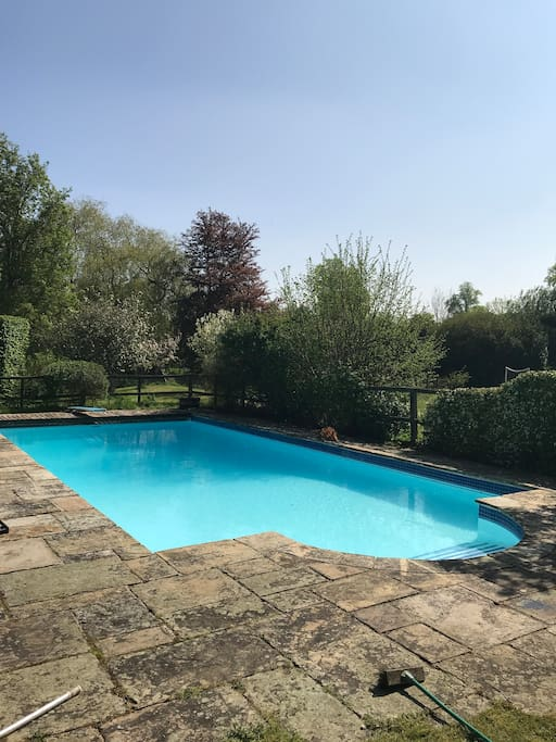 Pool (fenced off from rest of garden).