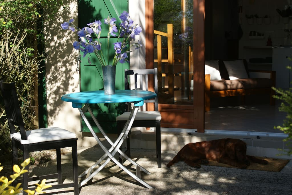 Petite terrasse privative