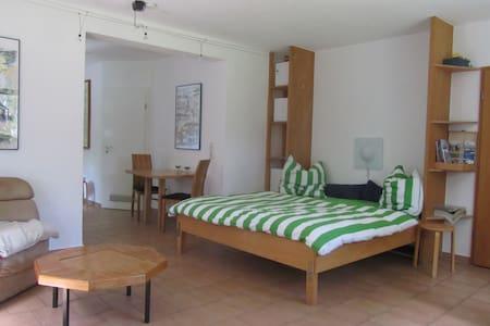 Zentrale, ruhige, Wohnung - Kiel - Apartment