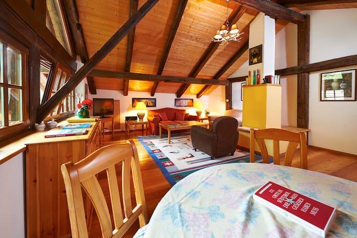 Gutshof Brandis - Apartment Schlossraut